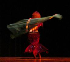 Piper's lyrical and dynamic veil dancing at Belly Dance Magic 2007 3046D